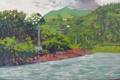 Lago Arenal VI