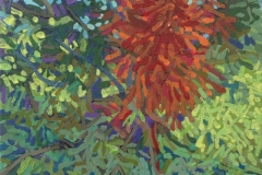 Serie: Bosque del artista